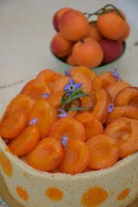 Charlotte abricot
